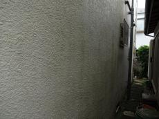 紫外線の弱い北面の外壁は塗膜の経年劣化により藻が多く発生してました。