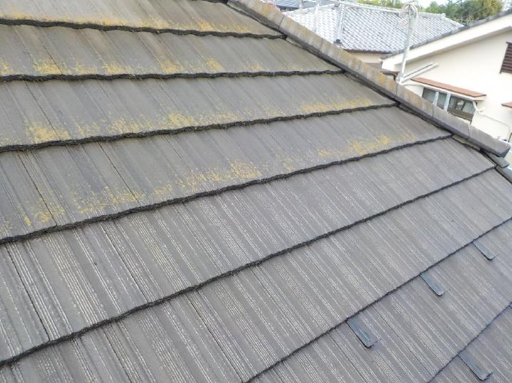 屋根の上下で、洗浄前後が見比べていただけます。