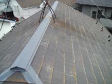 屋根材の防水性能がかなり低下して、藻が全面に生えてしまっています。