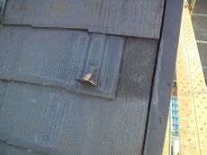 屋根にあがってみると欠損部分がところどころ見られる他、藻やコケの発生が確認できました。