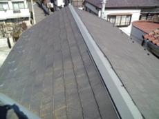屋根は藻が生え、塗膜の劣化がうかがえました。