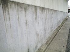 門壁は雨汚れのシミが全体的についてしまっていました。